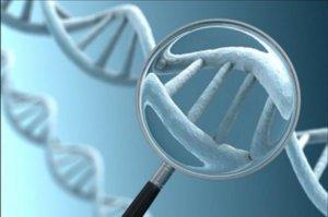 preimplantatsionnaya-geneticheskaya-diagnostika